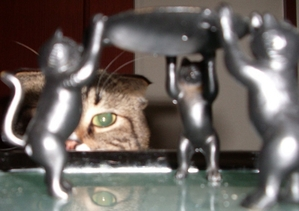 Three_cats